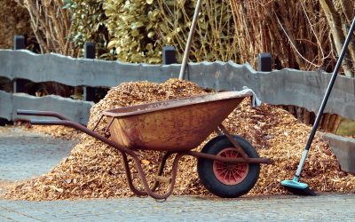 5 Tips for Mulching