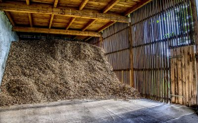 To Mulch, or Not to Mulch…. That is the question.