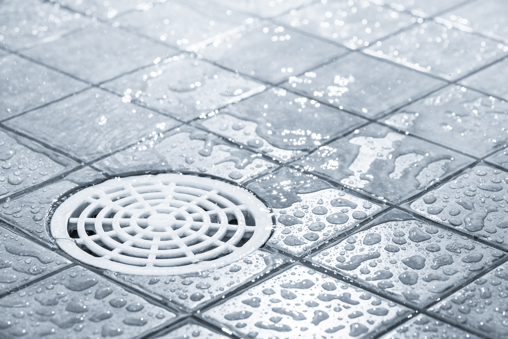 Everything You Need to Know About Floor Drains