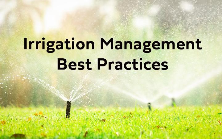 WEBINAR: Irrigation Management Best Practices