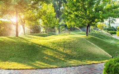 SMART IRRIGATION DELIVERS GREEN IN MANY WAYS
