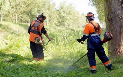 Maximizing Your Landscapers Performance