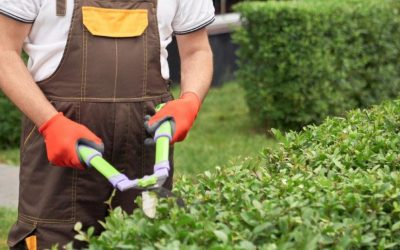 Scale Your Landscaping Capital Projects