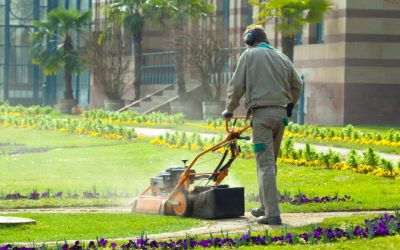 Case Study: Landscaping Quality Control Through a Managed Program