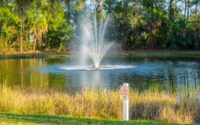 Detention and Retention Pond Maintenance Tips