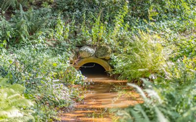 Building Best Management Practices (BMPs) For Your Stormwater Programs